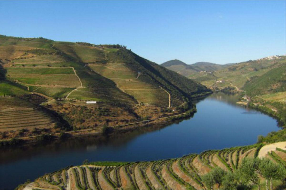 O Douro vinhateiro em Alijó