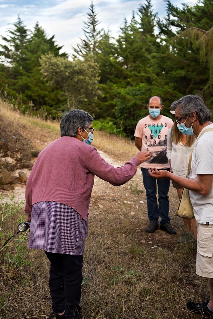 Judite Lopes fala sobre as propriedades das plantas