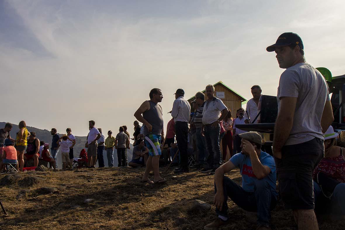 Na feira de gado de Portela de Alvite